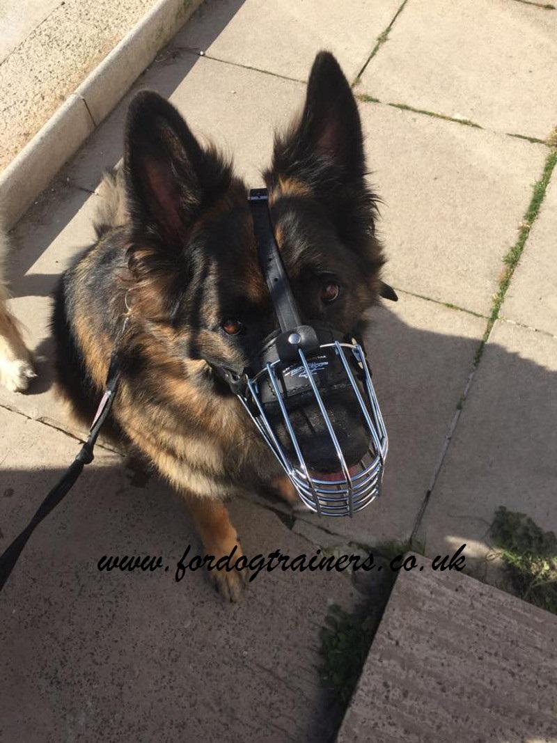 German Shepherd Muzzle   Dog Wire Muzzle German Shepherd Size