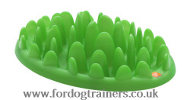 Interactive Dog Plate for Small and Medium Dog | Dog Accessories