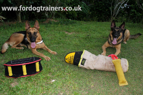 Schutzhund Training Tools for German Shepherds