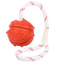 Dog Rubber Ball on String | Dog Bad Breath Fight Toy UK