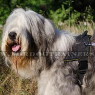 South Russian Shepherd Harness for Dog | Nylon Harness