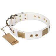 "Designer Dog Collar ""Unforgettable Impression"" by FDT Artisan"
