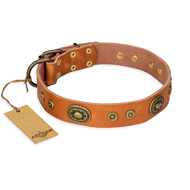 "Fabulous Dog Collar of Tan Leather ""Dandy Pet"" FDT Artisan"
