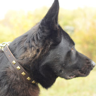 German Shepherd Collar Elegant Design | Leather Collar for GSD
