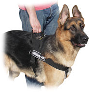 Everyday all weather dog harness for German Shepherd ❺UK