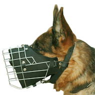 Fully padded hard dogs working wire muzzle for German Shepherd