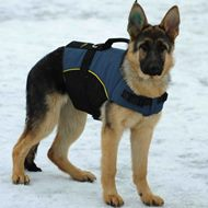 Dog Vest Harness for German Shepherd Hip Support, Winter Walking