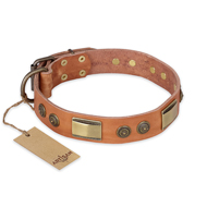 "Natural Leather Collar for Big Dogs ""Lost Desert"" FDT Artisan"