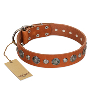 FDT Artisan Leather Dog Collar Studded with Flowers