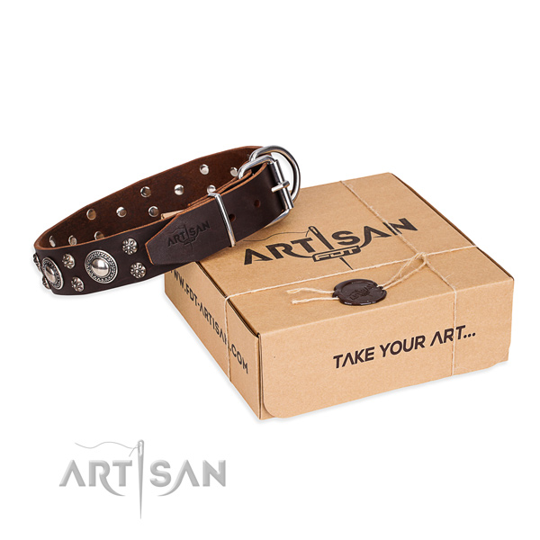 Brown Leather Dog Collar with a Gift Box