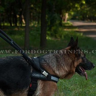 Guide Dog Harness with Handle and Reflective Front Strap