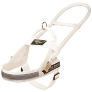 Buy White Dog Harness for Guide Dogs with Long Handle, High Vis