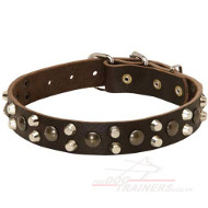 Hand Made Collars | Dog Collar Designer Style for the Best Price