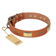 "Natural Leather Dog Collar ""Enchanting Spectacle"" FDT Artisan"