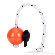 New Magnetic Set: Hard Plastic Dog Ball with Multi Power Clip by Top Matic