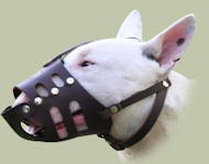 Leather Dog Muzzle for Bull Terrier Daily | Dog Muzzles UK
