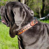 Italian Mastiff Dog Collar with Painting | Designer Dog Collar