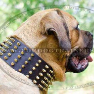 Large Dog Collars with Spikes for Mastiffs | Spiked Dog Collars