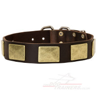 Large Strong Dog Collar With Vintage Massive Brass Plates
