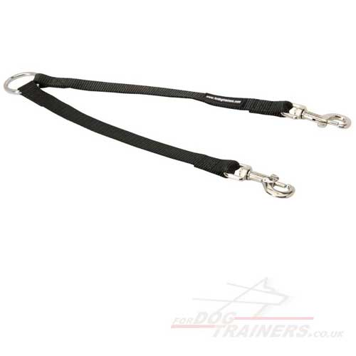 Walking 2 Dogs Double Dog Leash