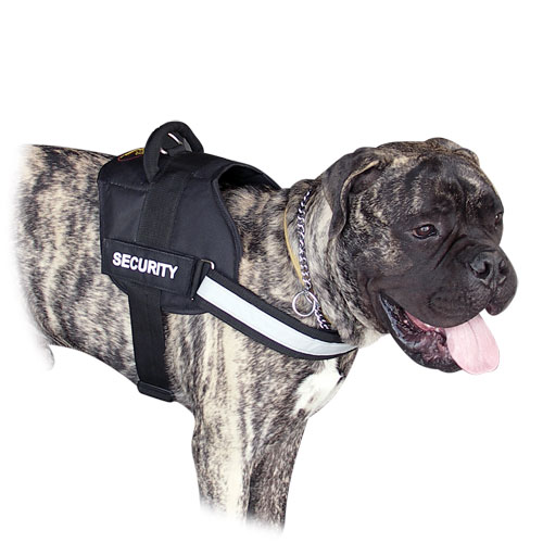 Large Dog Harness for Bullmastiff
