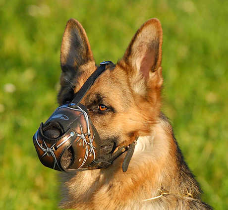Hand Painted Dog Muzzle for German Shepherd