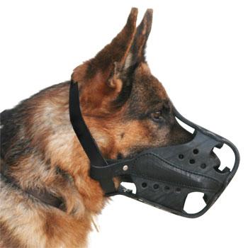 New-leather-gsd-dog-muzzle-UK_LRG.jpg