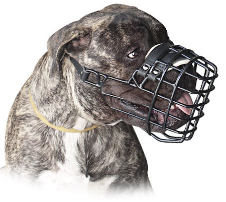 Wire basket muzzle for Bullmastiff UK