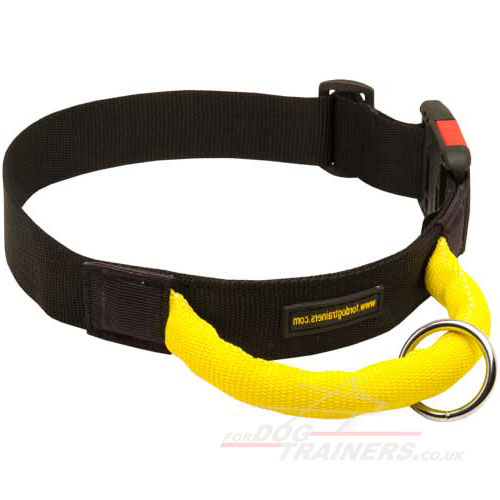 Strong Nylon Dog Collar With Handle | Agitation Dog Collar