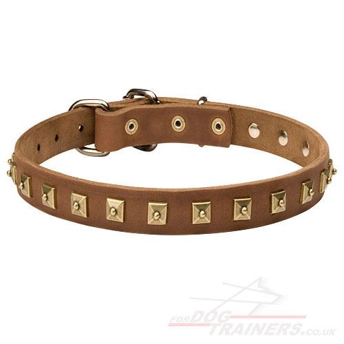 Durable Tan Leather Dog Collar