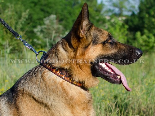 "Cool Hand Painted Leather Dog Collar for German Shepherd ""Flame"""