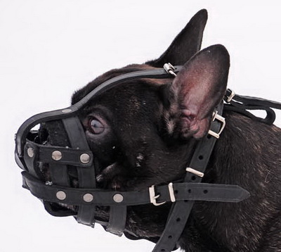 French Bulldog Soft Muzzle for Flat Nose Dog Made of Leather