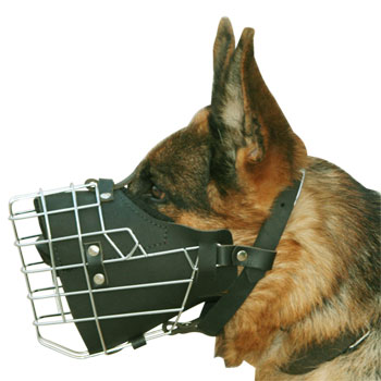 metal basket dog muzzle