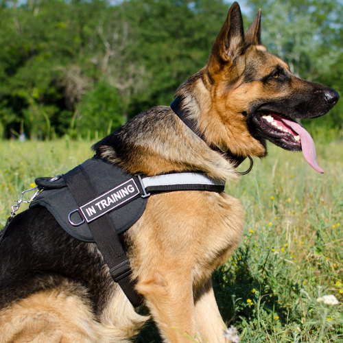 Good German Shepherd Harness UK with Reflexive Strap and Patches