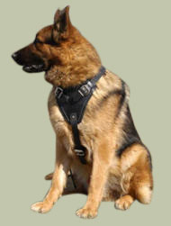 German Shepherd padded harness, working dog bestseller UK