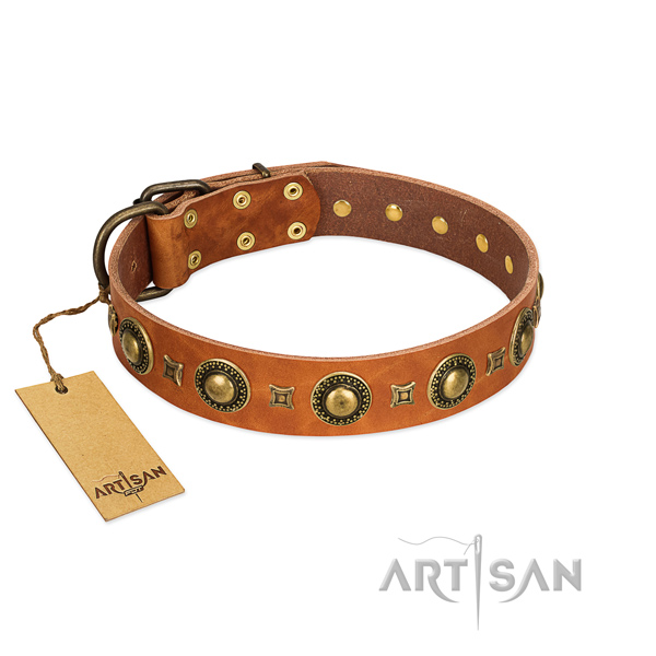 High-quality Tan Studded Dog Collar by FDT Artisan