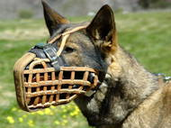 Pro Leather Police Dog Muzzle for German Shepherd K9 Dog