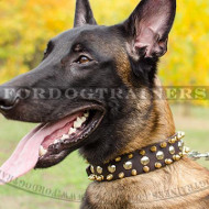 Luxury Dog Collar for Malinois | Spiked Dog Collar Glance Style
