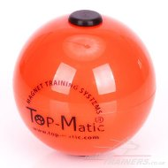 Hard Plastic Top-Matic Technic Ball