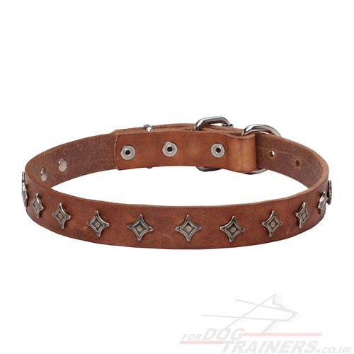 Black Studded Dog Collar With Tag Ring