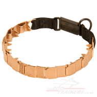 Metal Dog Collar for Dog Training | Herm Sprenger Dog Collar