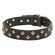 Diamond Studded Dog Collar, Wide, Thick and Soft Leather
