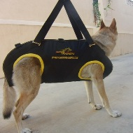 Professional Tactical Insertion Harness for Service Dogs