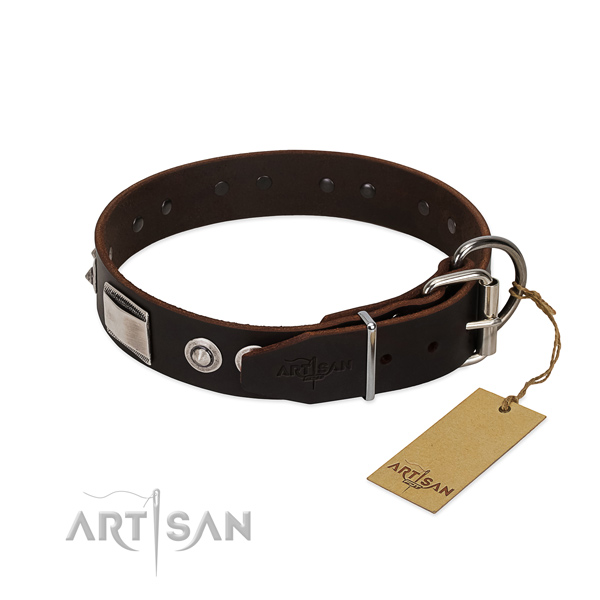 Studded Dog Collar with Buckle