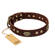 "Brown Leather Dog Collar ""Old-Fashioned Glamour"" FDT Artisan"