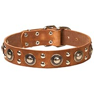 Strong Stuff Dog Gear: Luxury Dog Collars with Medals and Studs