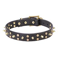 Beautiful Dog Collar 'Star Way' with Golden Studs and Spikes