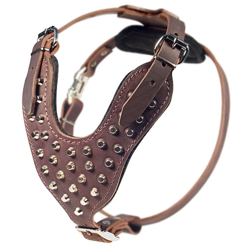 Studded walking dog harness with pyramids