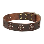 New Decorated Dog Collar for Your Pretty Doggy