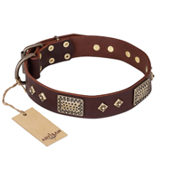 "Noble Brown Leather Collar for Big Dogs ""Golden Stones"" Artisan"